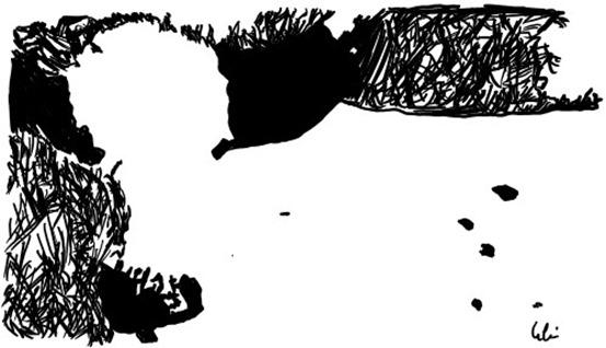 Optische-Täuschung-klin_thumb.jpg